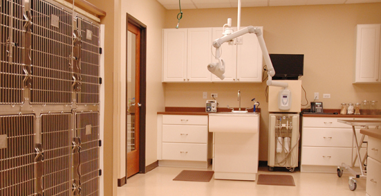 Our state of the art veterinarian facility near Algonquin, IL